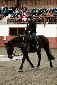 Parelli Terri Martinus sussex south east instructor horse training