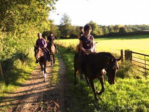 Horsemanship courses