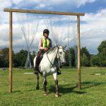 natural horsemanship, Terri Martinus, horse holiday