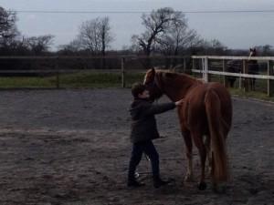 parelli kids natural horsemanship